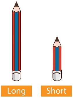 Palabras opuestas adjetivos con lápiz largo y lápiz corto sobre fondo blanco.
