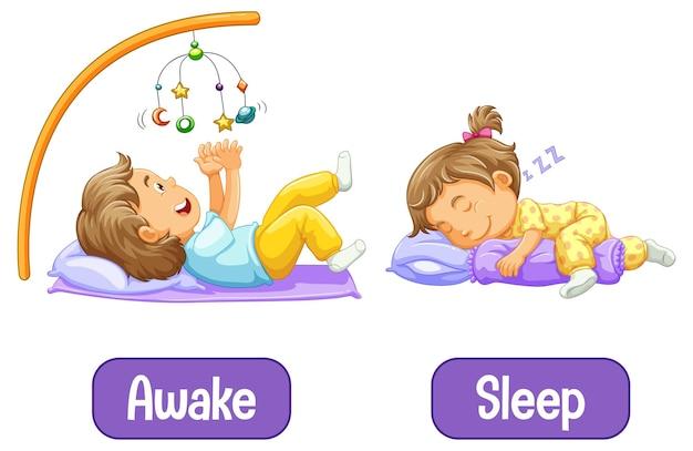 Palabras opuestas con despierto y dormido.