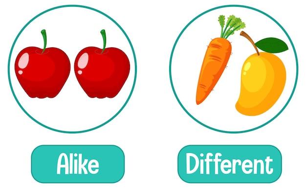Palabras opuestas con iguales y diferentes.