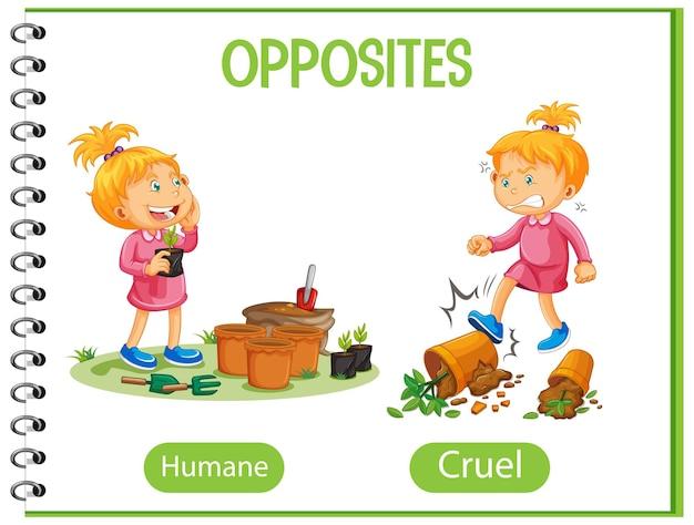 Palabras opuestas con ilustración humana y cruel.