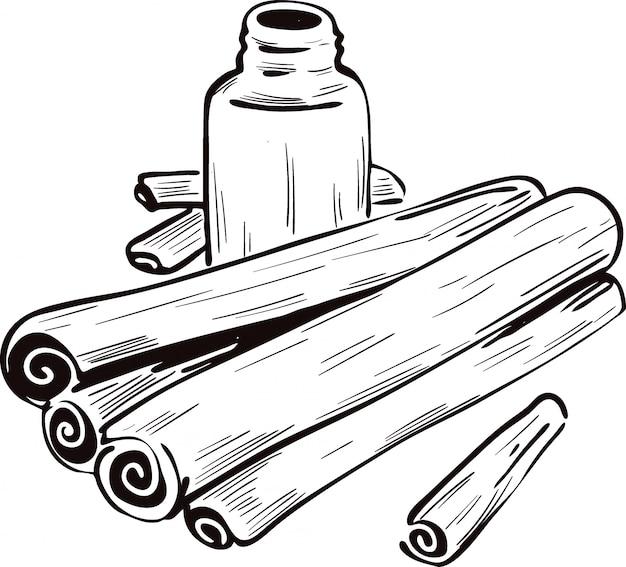 Palitos de canela secos y botella con remedio aislado ilustración vectorial