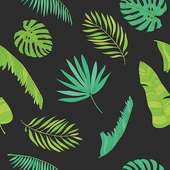 Palma tropical, monstera, chamaedorea deja el fondo del modelo