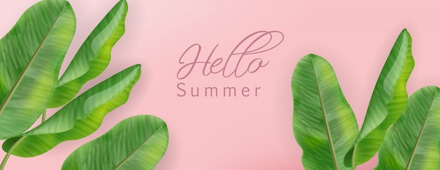 Palmera tropical con hola pancarta de hojas de verano.