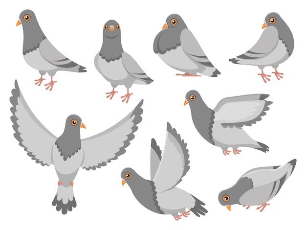 Paloma de dibujos animados ciudad paloma pájaro, palomas voladoras y pueblo aves palomas conjunto de ilustración aislada