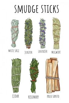 Palos de mancha sabio conjunto dibujado a mano. paquetes de hierbas