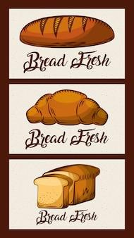 Pan fresco tarjetas panadería productos alimenticios