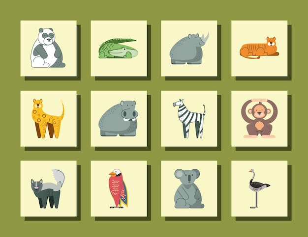 Panda cocodrilo rinoceronte hipopótamo mono koala y aves animales de la selva dibujos animados iconos ilustración