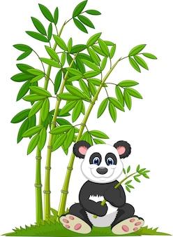 Panda de dibujos animados sentado y comiendo bambú