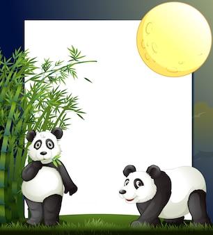 Panda y plantilla de borde de bambú