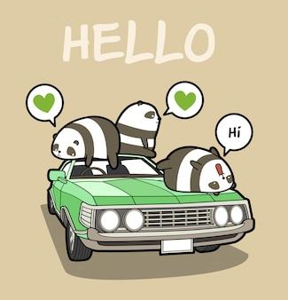 Pandas kawaii en el coche