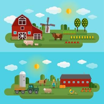Panorama de granja plana con dos tipos diferentes de granja y animales