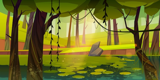 Pantano o lago con nenúfares en el bosque, la naturaleza