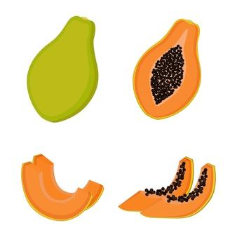 Papaya, fruta entera, mitades y rodajas. ilustración vectorial