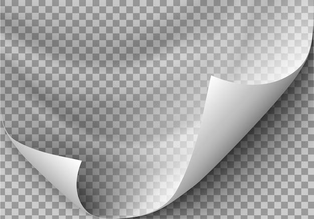 Papel en blanco. ilustración