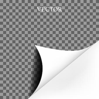 Papel en blanco rizado de página