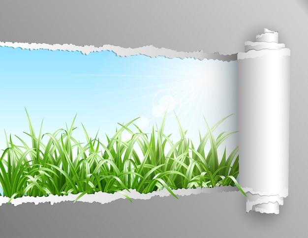Papel rasgado con fondo de hierba.
