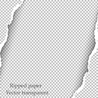 Papel rasgado y fondo transparente con espacio para texto.