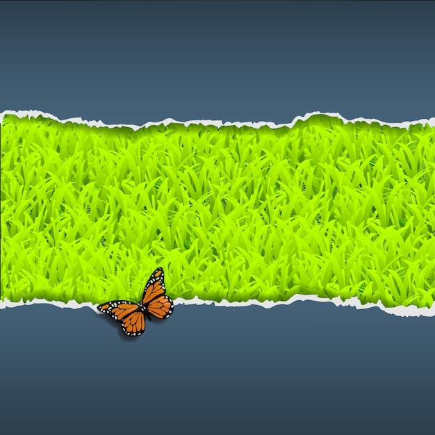 Papel rasgado con hierba y mariposas