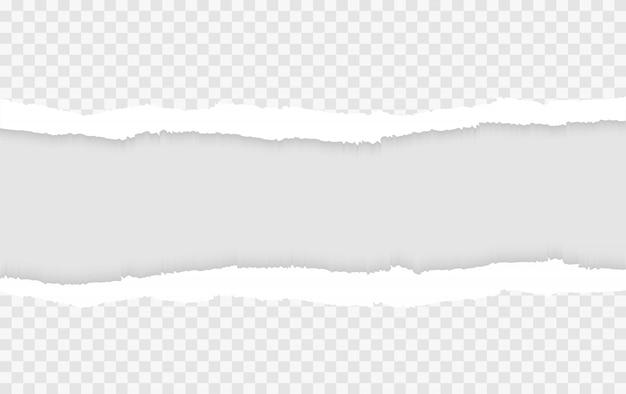 Papel rasgado rasgado en blanco