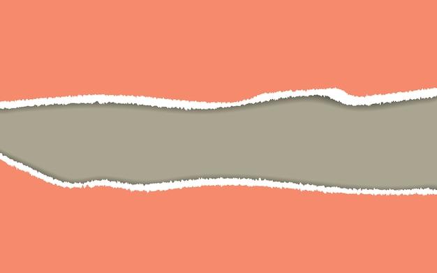 Papel rasgado vector de papel rasgado