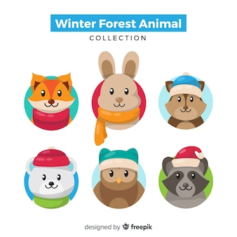 Paquete animales bosque invierno