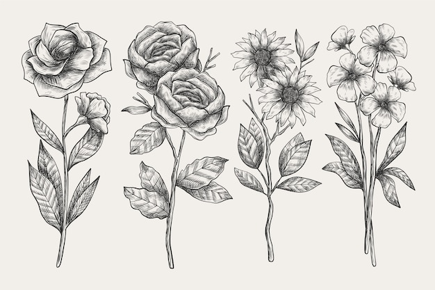 Paquete de flores de botánica vintage dibujado a mano realista