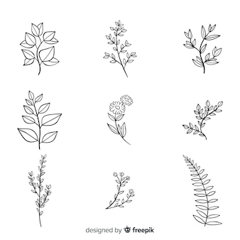 Paquete de flores botánicas dibujadas a mano realista
