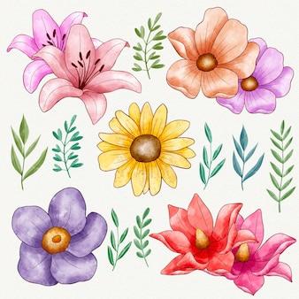 Paquete de flores de colores pintados a mano