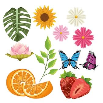 Paquete de flores y frutas con mariposas.