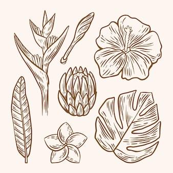 Paquete de flores y hojas de contorno tropical