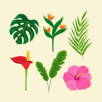 Paquete de flores y hojas tropicales