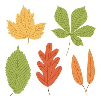 Paquete de hojas de colores dibujados a mano