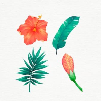 Paquete de hojas y flores tropicales dibujadas a mano