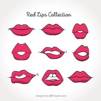 Paquete de labios de color rosa