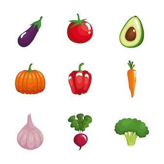 Paquete de nueve verduras comida sana