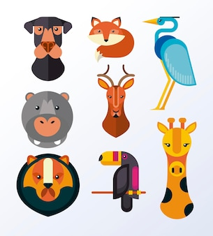 Paquete de ocho animales set iconos