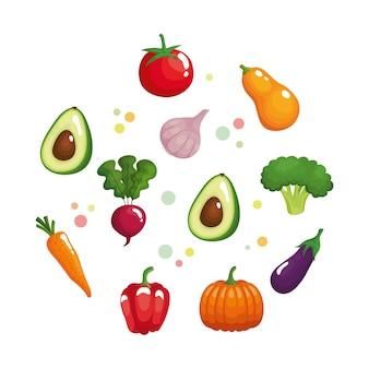 Paquete de once verduras comida sana.