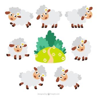 Paquete de ovejas de dibujos animados