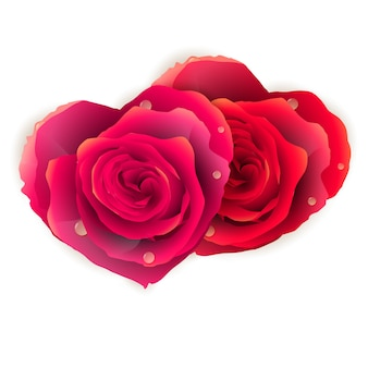 Pareja corazón hecho de rosas rojas.