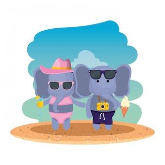 Pareja de elefantes con cámara fotográfica y cóctel en la playa.