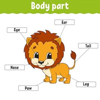 Parte del cuerpo.