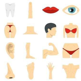 Partes del cuerpo conjunto de iconos planos