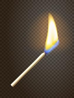 Partido realista de la quema
