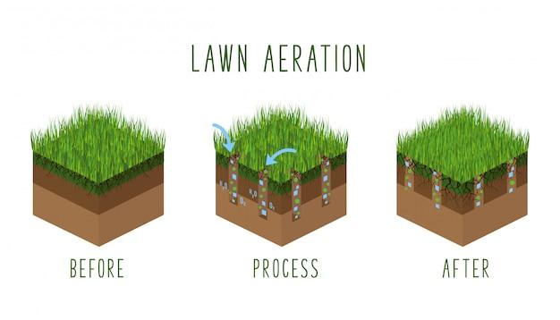 Pasos del proceso de aireación del césped, isométrico antes y después, servicio de cuidado del césped, jardinería