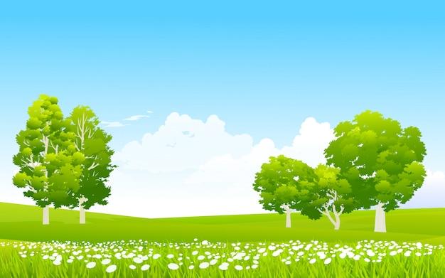 Pastizales floridos en cielo azul