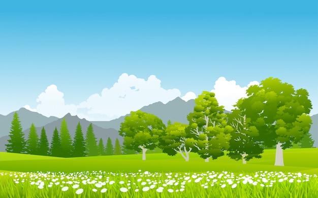 Pastizales verdes con flores en la montaña