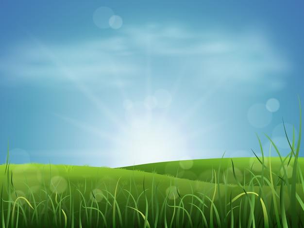 Pasto prado y cielo