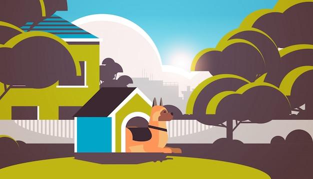 Pastor alemán descansando en la caseta del perro en el patio trasero amigo humano mascota concepto de dibujos animados de fondo de paisaje animal horizontal