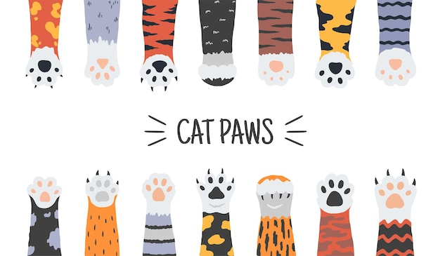 Patas de gato de divertidos cachorros y gatitos ilustración Vector Premium