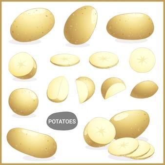 Patatas frescas vegetales con varios cortes y estilos.